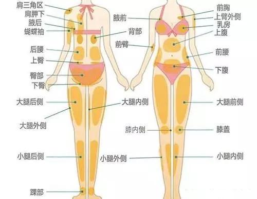 北京星医汇医疗美容:关于吸脂你想了解的都在这里
